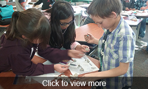 Click to view more photos of our paleontology project.