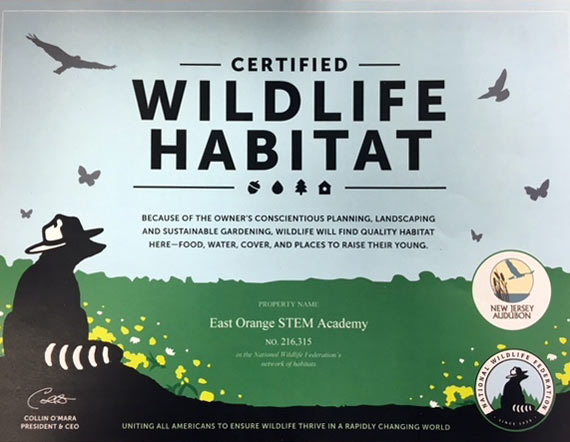 Certified Wildlife Habitat Flyer - Uniting all Americans to ensure wildlife thrive in a rapidly changing world