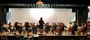 The orchestra performing on stage