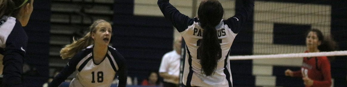 Paramus High School Volleyball players