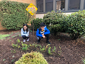 students looking at their garden