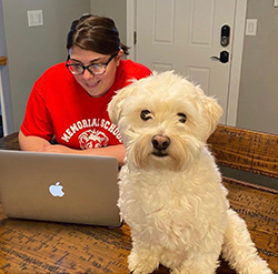 Staff member using their laptop while their dog looks into the camera