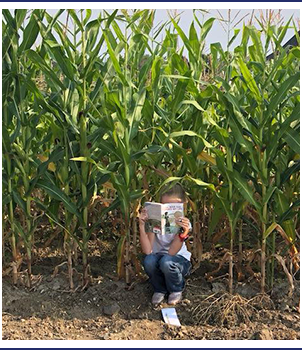 Student reading a book while sitting in a field