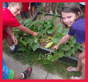 kids showing vegetables in their garden