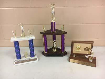 3 Boys Golf trophies