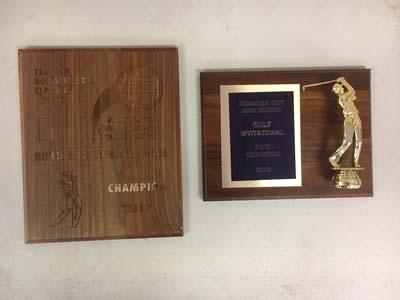 2 boys golf awards