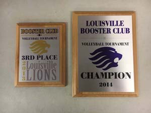 Volleyball Champions - 3rd place 2013, Champions 2014