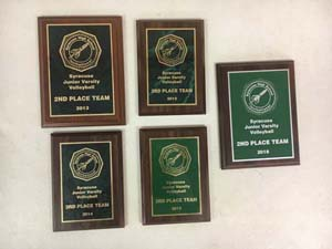 5 Volleyball Awards