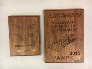 Volleyball awards 2015