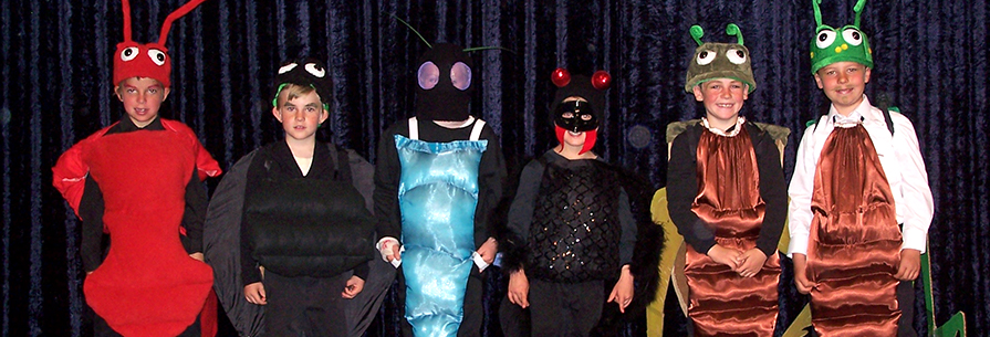 Students dressed in bug costumes pose in front of a curtain