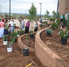 Students and staff members standing near a gardening and planting area