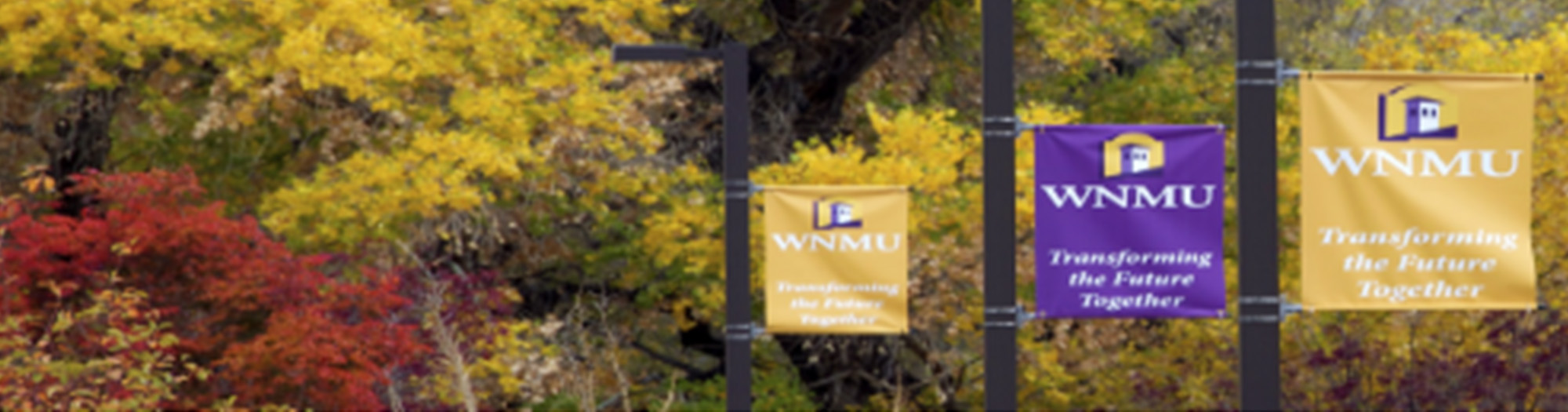 View of colorful trees and banners at WNMU