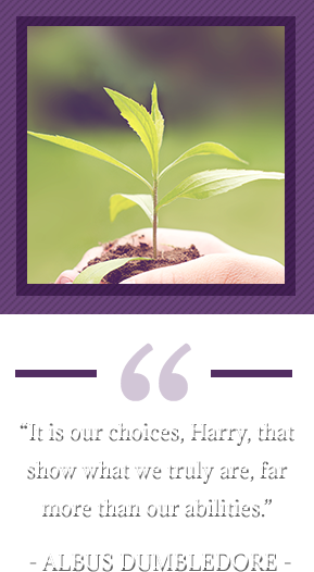 """It is our choices, Harry, that show what we truly are, far more than our abilities."" – Albus Dumbledore. Hand holding sprouted plant."