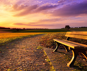 Park bench and sunset