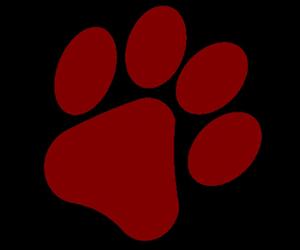 Cougar paw logo