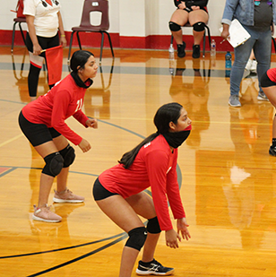 female volleyball team