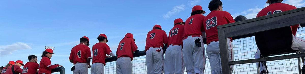 Baseball team standing at railing watching the game