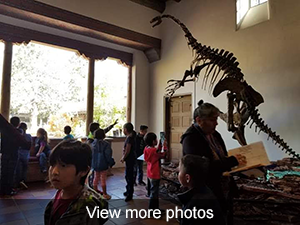 View more photos of Museum visit