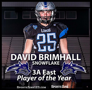 David Brimhall - Snowflake - 3A East Player of the Year