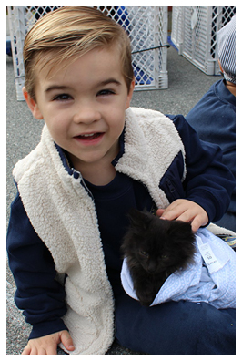 little boy holding a kitten