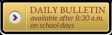 Daily Bulliteien