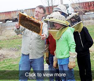 photos of honeybee field trip