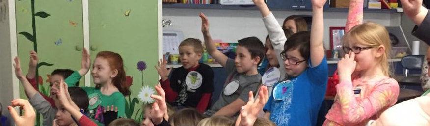 Students raising hands while engaged in class
