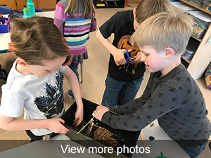 view more photos of Beaver Learning
