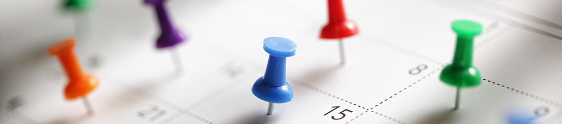 Colorful thumbtacks pinned to calendar
