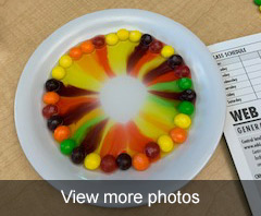 view more photos of the Skittle Experiment 2019