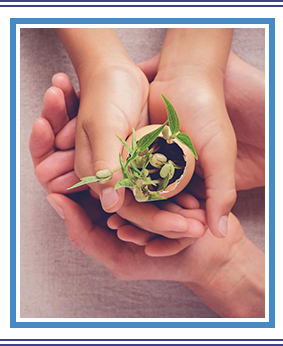 Adult and child hands holding seedling plants in eggshells