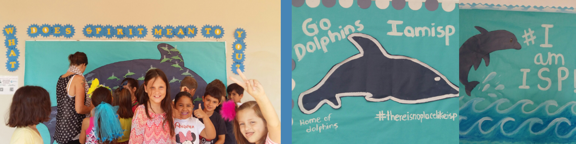 ISP Dolphins