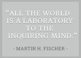 Fischer quote