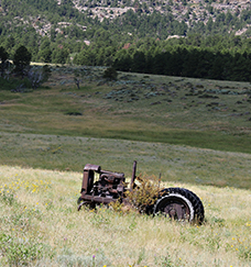 an old tractor in a field