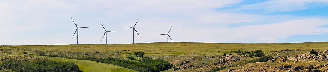 four windmills on a hill