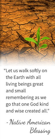Let us walk softly on the Earth with all living beings great and small remembering as we go that one God kind and wise created all. - Native American Blessing