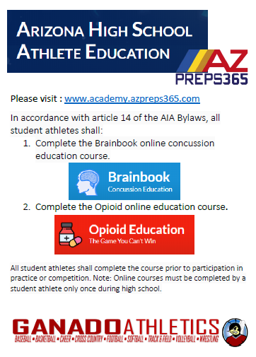 Concussion and Opioid Education Flyer