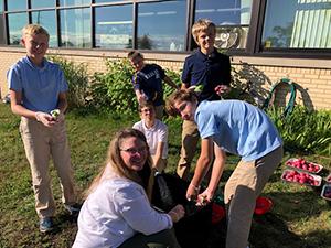 students picking potatoes from school garden