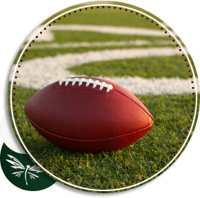 football sitting on field