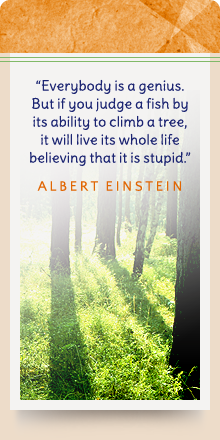 Everybody is a genius. But if you judge a fish by its ability to climb a tree, it will live its whole life believing that is stupid. - Albert Einstein