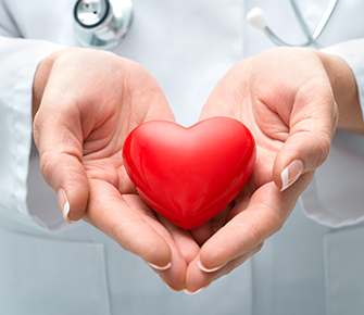 Medical professional holding a red shaped heart