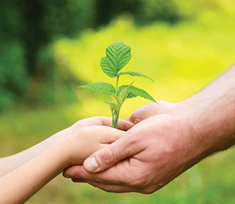 adult helping child hold a young plant