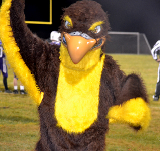 school mascot at a football game