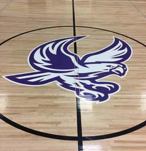 gym floor logo