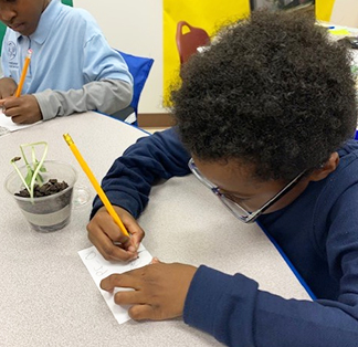 Elementary student taking notes about growing a plant