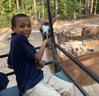 Student having fun with a goat on a zoo field trip