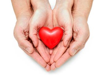 Adult hands holding kids hands hold heart