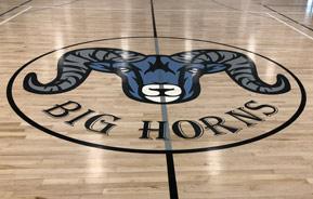 Big horns logo