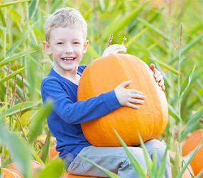 child holding pumpkin