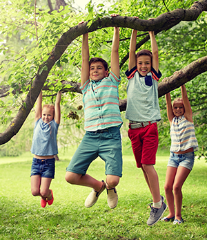 kids playing on tree branches
